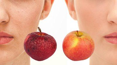 植物由来リンゴ